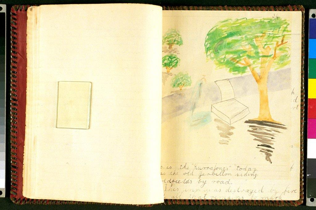 A drawing from Marianne Seitz of the kurrajong tree at the railway stop in Yerbillon.