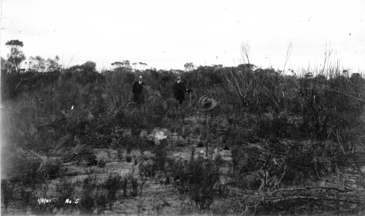 A hat on a stick marking the the spot where No 5 will be built in the bush.